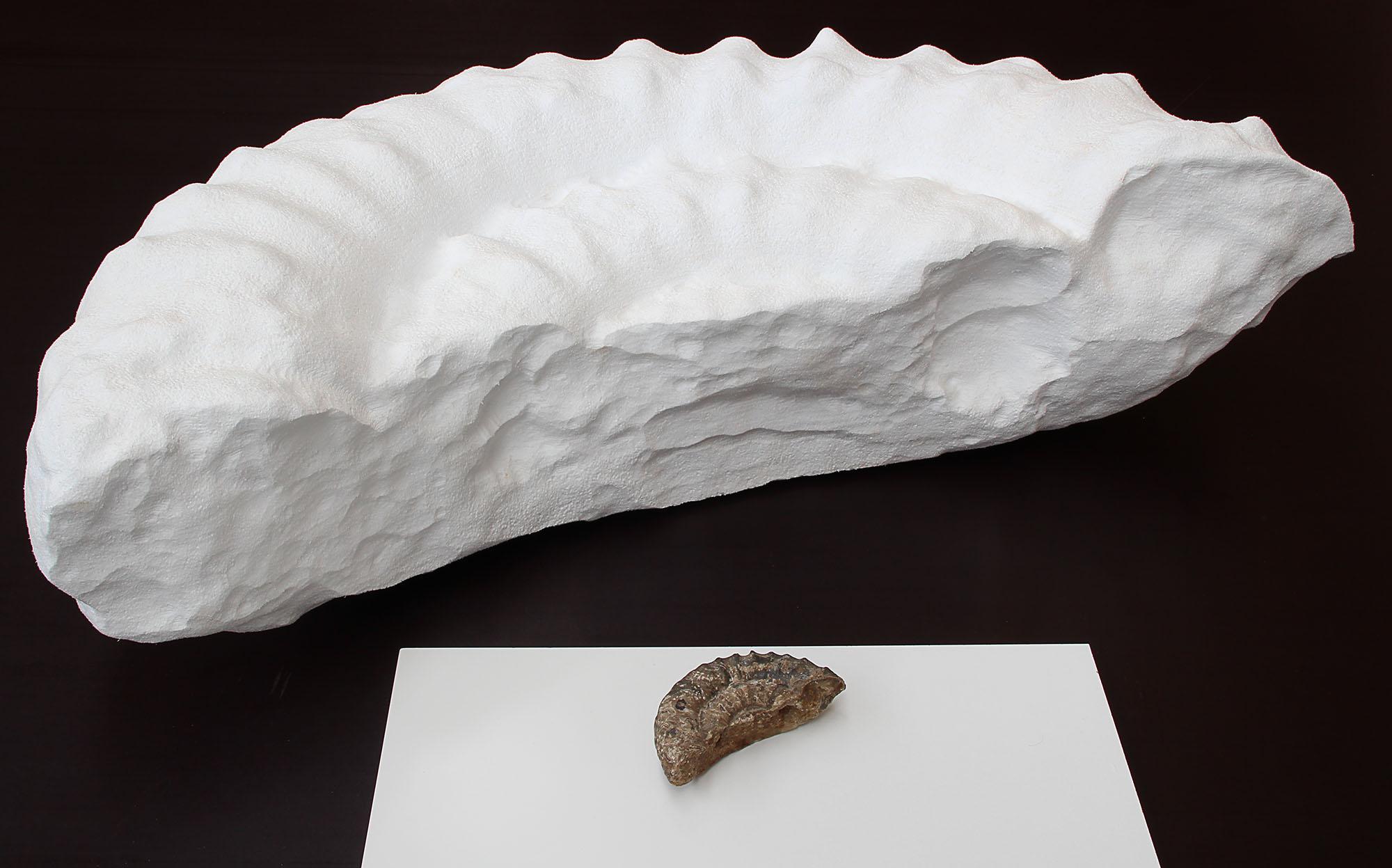 Scan & 3D Fräsen